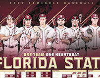 2015 Florida State Baseball