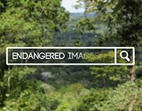 WWF - Imágenes en peligro de extinción.
