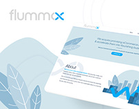 Flummox - Landing Website Design