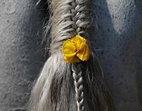 Ghode Jatra or Horse Parade Festival in Nepal