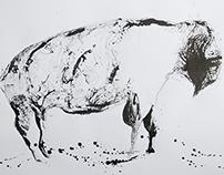 drawings '14