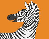 African Zebra fun facts
