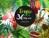 Watercolor tropic