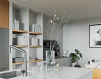 Interior animation & Viz