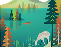 3 poster designs for Acadia National Park locations