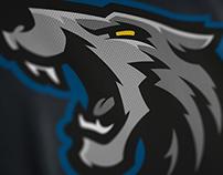 Minnesota Timberwolves Rebrand Concept