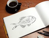 Animation, fish