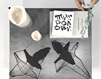 """Flight Shadows"" decorative poetic object + model"