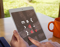 MS Development - Logo design