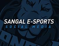 Sangal E-Sports Social Media