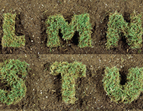 Turf Illustrative Typeface