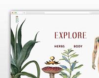 Botanical- Interface & Poster