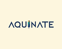 Canal Aquinate | Branding