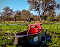 On the river - Okavango Delta - Botswana