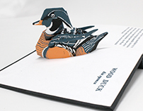 Waterbirds of Michigan: A Pop-Up Field Book