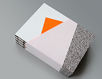 Dynamic City / The publication