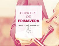 Programa. Concert de Primavera. Diseño gráfico