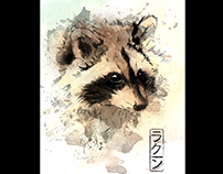 Raccoon / Watercolor in the Wild Collection