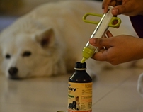Accufeed for dogs