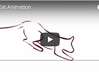 Cat Jump Short Animation