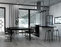VIZprofistudio Minimal Gray Home for one Family 3D CGI