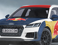 Audi TT Offroad E-Rally