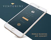 Venturini - Mobile Banking App Concept