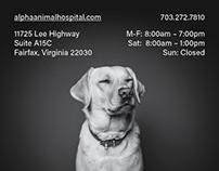 Alpha Animal Hospital Print Ad