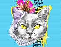 DryCat