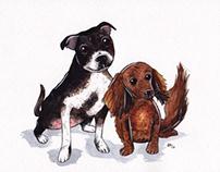 Dog commissions