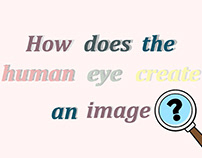"Animation video of ""How does Human eye form an image?"""