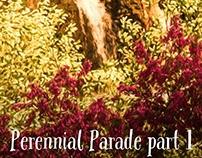 Perennial Parade/ Spring