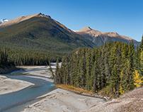 Fall in Banff & Jasper 2017