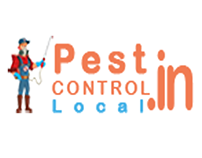 Where can you enter the pest in your home?