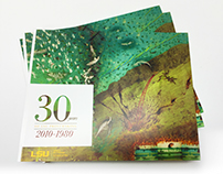 30 Years of LSU Printmaking