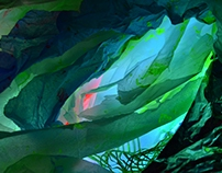 Salvia Divinorum's Studio - Light & Texture Explore