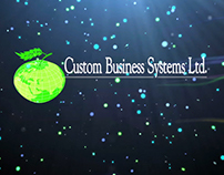 Custom Business Sytems Ltd.