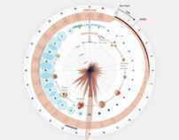 The Menstrual Cycle - Scientific American