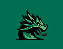 Cooper Dragons High School Logo