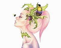 Thistle (Carduus nutans) - representing July