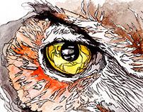 Wise Eye Owl