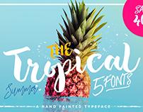 Tropical Brush Script Font Free Download