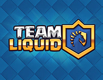 Branding: Team Liquid Clash
