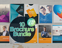 10 Multi-pages Brochure