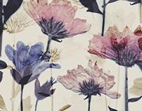 Levi's® Dried Florals & Fallen Botanicals