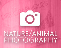 Nature / Animal Photography