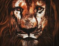 Illustration: Noble King 🦁