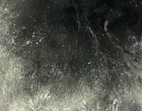 Placerita Canyon Tonal Paintings 2015
