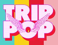 TRIP POP Music Fest 17/12/15