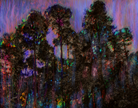 Cambria Pines